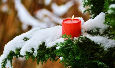 candle-29926451280